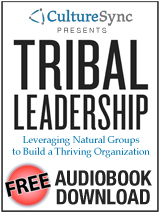 Free Audio for Tribal Leadership book